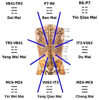 Ba Gua della schiena