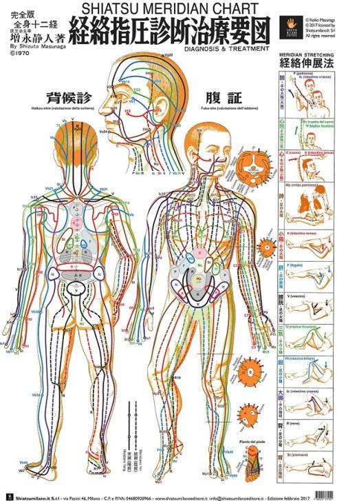 Shizuto Masunaga: mappa dei meridiani dello Shiatsu stile Iokai
